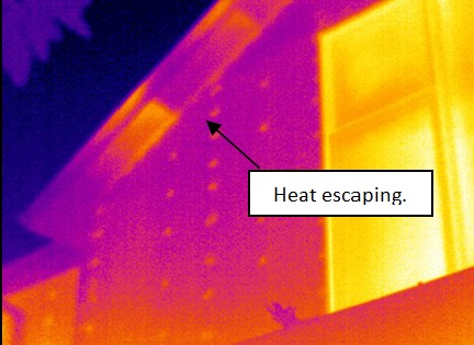 thermal imaging report