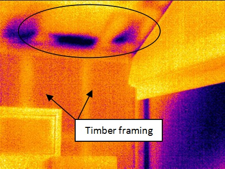 The dark areas in the second picture could be moved or sagging insulation in the roof area hence the thermal variation.
